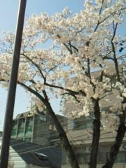 今村俊史 公式ブログ/お騒がせw(°O°)w 画像1