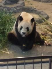 梅田絵理子 公式ブログ/上野動物園 画像1