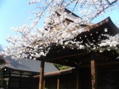 梅田絵理子 公式ブログ/ボートにのってお花見 画像1