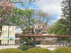 梅田絵理子 公式ブログ/コストコ 画像3
