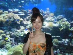 梅田絵理子 公式ブログ/クラゲが好き 画像3