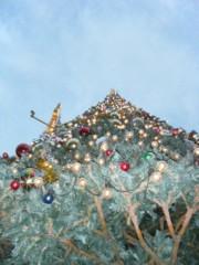 梅田絵理子 公式ブログ/大きなツリーの木の下で 画像2