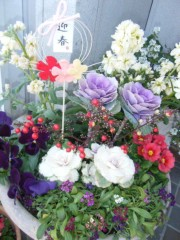梅田絵理子 公式ブログ/はじめまして2012年 画像2
