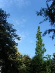 梅田絵理子 公式ブログ/日曜日の井の頭公園(1) 画像3
