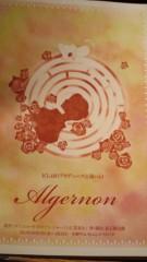梅田絵理子 公式ブログ/「Algernon」観劇 画像1