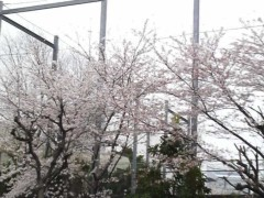 木下博勝 公式ブログ/皆さんは、どんな臭いがつらいですか? 画像1
