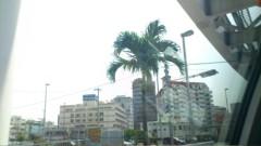 木下博勝 公式ブログ/沖縄は暑くなってきました。 画像1