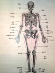 木下博勝 公式ブログ/解剖生理学 画像2