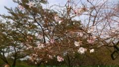 木下博勝 公式ブログ/今日、10月20日、午前11時から、テレビ東京 画像2