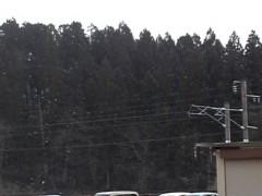 木下博勝 公式ブログ/北国の春はまだ先のようです 画像2