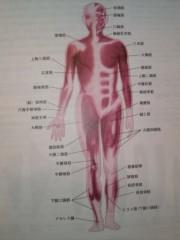 木下博勝 公式ブログ/解剖生理学 画像1