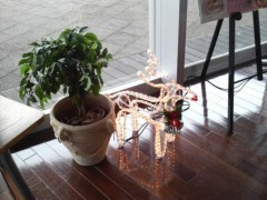 木下博勝 公式ブログ/大学のカフェで見つけました 画像1