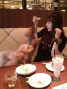 三枝夕夏 IN db 公式ブログ/☆ドッグカフェ☆ 画像1