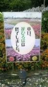 三枝夕夏 IN db 公式ブログ/☆ですが…☆ 画像1