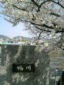 三枝夕夏 IN db 公式ブログ/☆京都☆ 画像1