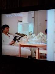 新垣直人 公式ブログ/CMで家パパ 画像1