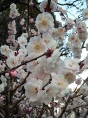 新垣直人 公式ブログ/震災から1週間 画像1