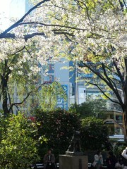 新垣直人 公式ブログ/東京の春 画像3