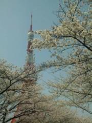 新垣直人 公式ブログ/東京の春 画像1