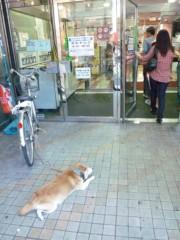 新垣直人 公式ブログ/忠犬 画像2