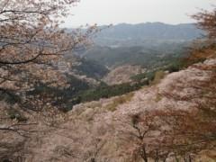 新垣直人 公式ブログ/春の回想 〜吉野山〜 画像3
