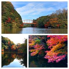 新垣直人 公式ブログ/湖上の秋 画像1