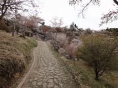 新垣直人 公式ブログ/春の回想 〜吉野山〜 画像1