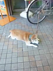 新垣直人 公式ブログ/忠犬 画像1