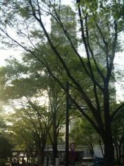 新垣直人 公式ブログ/新緑の時 画像1