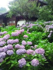 新垣直人 公式ブログ/パステルタウン 画像1