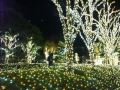新垣直人 公式ブログ/光の森 画像2