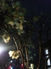 新垣直人 公式ブログ/暴風! 画像1