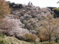 新垣直人 公式ブログ/春の回想 〜吉野山〜 画像2