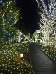 新垣直人 公式ブログ/光の森 画像1