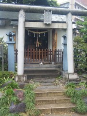 新垣直人 公式ブログ/猫の神様? 画像1