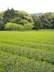 新垣直人 公式ブログ/静岡食いだおれツーリング終わり 画像1