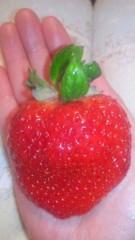 伊藤えみ 公式ブログ/イチゴの日!? 画像1