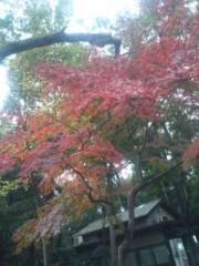 伊藤えみ 公式ブログ/この冬一番 画像2