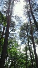 川田妙子 公式ブログ/森林浴〜 画像1