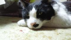 川田妙子 公式ブログ/空気が違いま〜す 画像2
