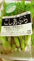 川田妙子 公式ブログ/新鮮野菜 画像2