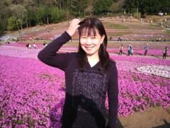 川田妙子 公式ブログ/芝桜〜 画像1