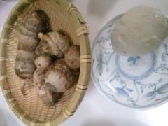川田妙子 公式ブログ/今日は暖かでしたね 画像1