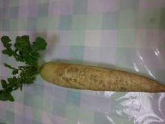 川田妙子 公式ブログ/大根と白菜 画像1