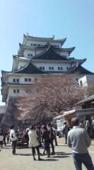 新田有加 公式ブログ/桜咲けー 画像1
