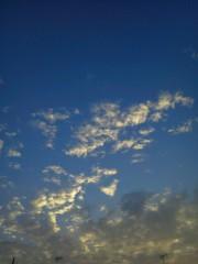 佐藤未帆 (しながわてれび出演ブログ) 公式ブログ/空の色 画像2