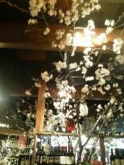 佐藤未帆 (しながわてれび出演ブログ) 公式ブログ/渋谷 カフェ お花見 画像1