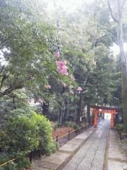 佐藤未帆 (しながわてれび出演ブログ) 公式ブログ/熊野神社 画像1