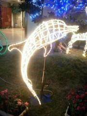 佐藤未帆 (しながわてれび出演ブログ) 公式ブログ/イルミネーション イルカ! 画像1