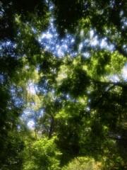 佐藤未帆 (しながわてれび出演ブログ) 公式ブログ/万葉公園  画像2